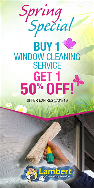Spring 2018 Window Cleaning Promotion
