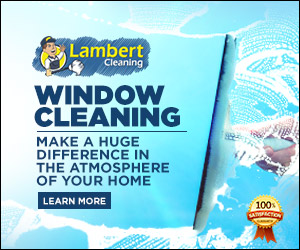 Window Cleaning Advertisement
